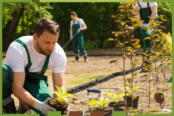 Gartengestaltung Wien – der auserwählte Partner für den traumhaften Garten